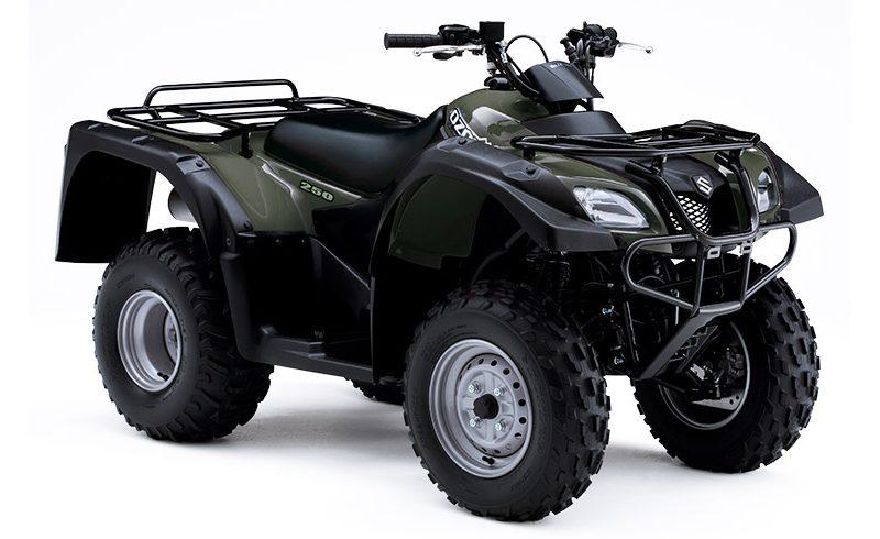 Suzuki Ozark 250 Groen